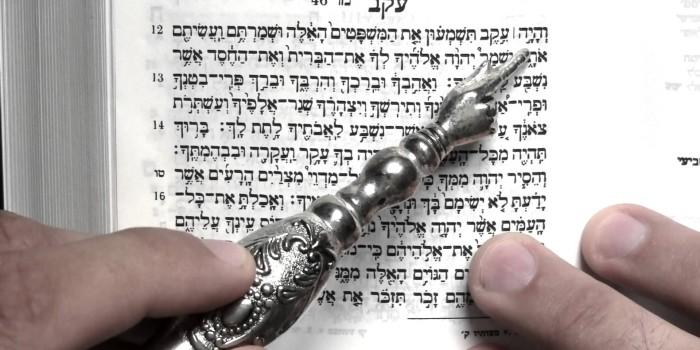 A 'BISSEL' OF TORAH Parashat EIKEV (DEUTERONOMY 7:12- 11:25)