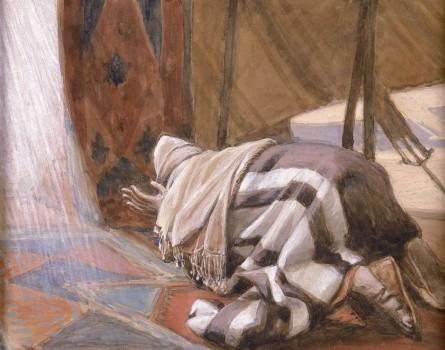 A 'BISSEL' OF TORAH Parashat VaYera  (Genesis 18:1 – 22:24)