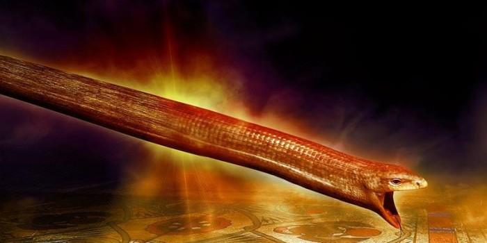 A 'Bissel' of Torah Parashat  VA'EIRA (Exodus 6:2-9:35)