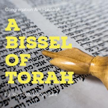 A 'Bissel' of Torah: EKEV (DEUTERONOMY 7:12-11:25)